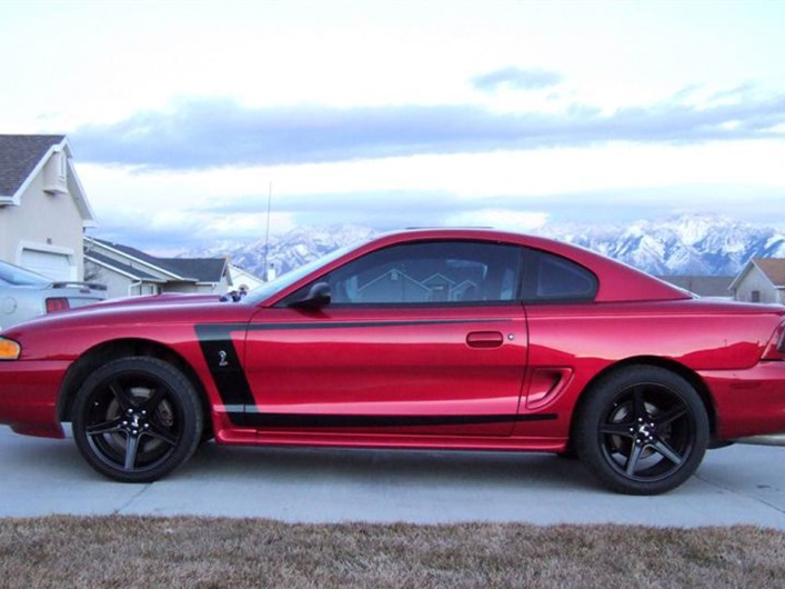 Ford F150 Raptor For Sale >> 1994-1998 Mustang C-Stripes - Rocky Mountain Graphics