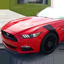 Mustang Decals