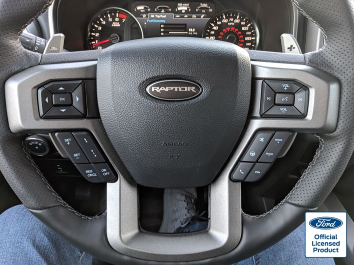 ROCKY-MOUNTAIN-GRAPHCS-RAPTOR-STEERING-WHEEL-DECAL